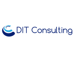 ditconsulting